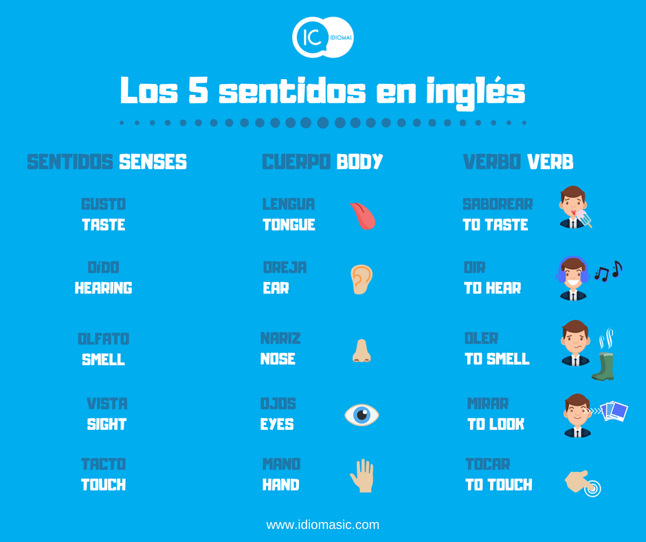 Los 5 Sentidos En Ingles The Five Senses Ic Idiomas Tu Blog Para Aprender Ingles