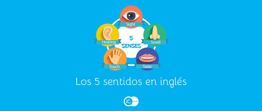 Los 5 Sentidos En Inglés The Five Senses Ic Idiomas